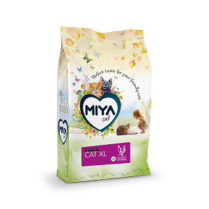 Miyacat Excellent XL